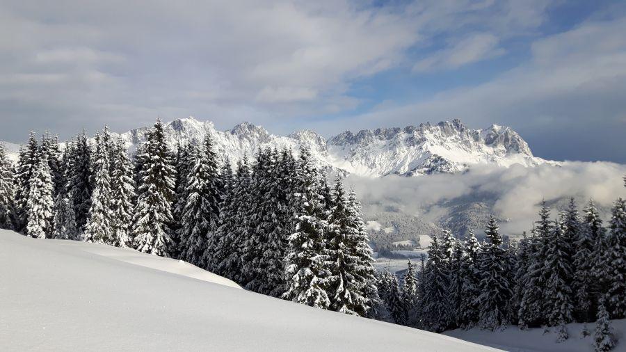 Erfolgreicher Winter für Region Wilden Kaiser